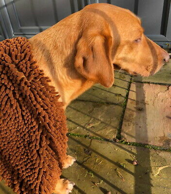Dog Drying Mitt. Super Soft Noodle Microfibre. Absorbent, Soft, Fast Drying