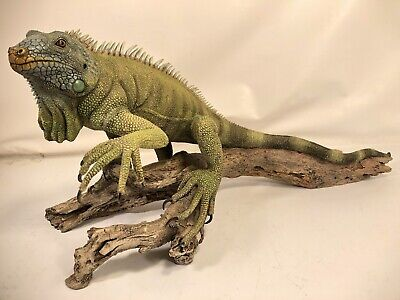 "Retired Extremely Rare Iguana 20"" Vintage Country Artists Large Model 02314"