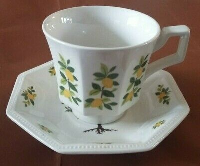 Johnson Brothers Lemon Tree Octagon Cup & Saucer