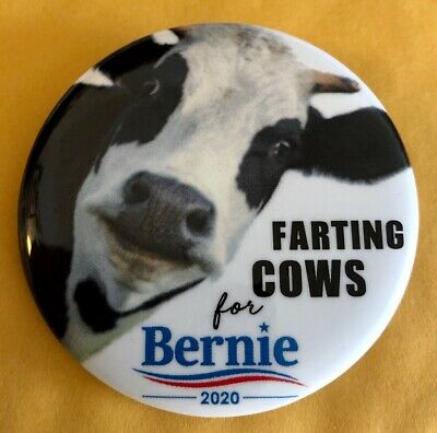 """Humorous 2 1/4"""" Farting Cows for Bernie 2020 Presidential Campaign Pin"""