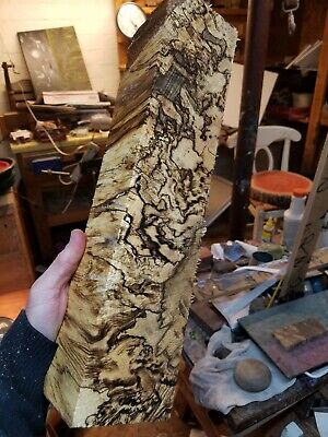 Spalted Hackberry / Knife Scales/Peppermill Blanks/ game call blanks
