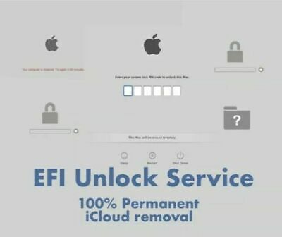 EFI Unlock FIRMWARE Password  Removal Service for MacBook Pro / Air 2010 - 2017