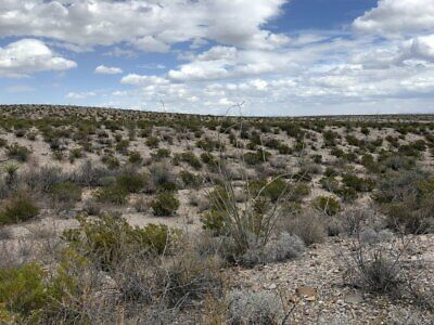 Gorgeous 40 Acres W/Creek & Roads In Presidio County
