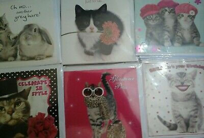 40 Cats Cards, Wholesale Joblot Greeting Cards
