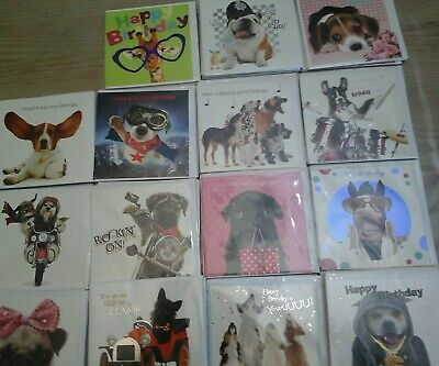 40 Paw Pets Cards, Wholesale Joblot Greeting Cards