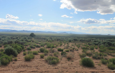 Land for Sale | Colorado Half Acre Corner Lot $199 Down $75 a Month FREE SILVER