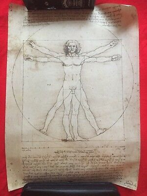 NEW UNUSED Poster:  Vitruvian Man - Leonardo da Vinci (1490) import from Milan