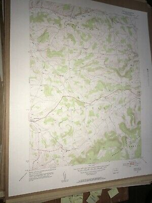 Roseville PA Tioga County USGS Topographical Geological Survey Quadrangle Map