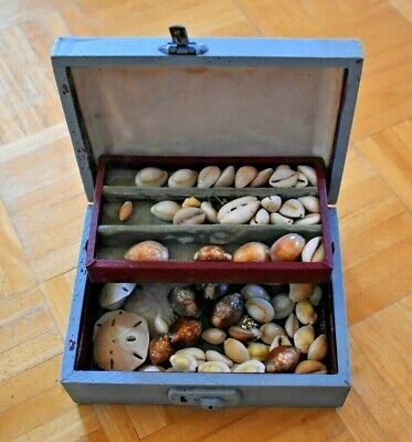 Vintage Painted Box FULL of Shells