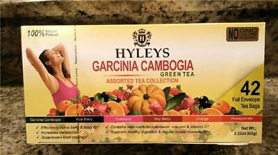 Hyleys 100 Natural Assorted Tea Collection 42 Teabag Pack