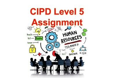 Level 5 - CIPD Individual Assignment