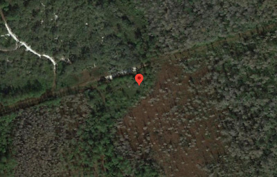 2.00 Acres, Warranty Deed, Bids start @ $0.99, No Reserve, Low Taxes, GPS,