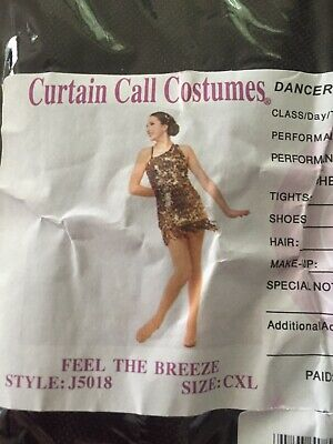 Gorgeous Sequin Girls Jazz Dance Costume Size Cxl As New