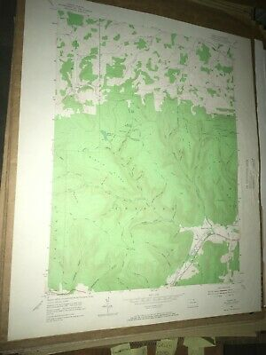Asaph Pa. Tioga Co USGS Topographical Geological Survey Quadrangle Old Map