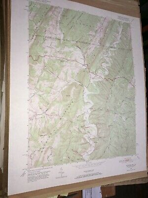 Flintstone MD PA Allegany Co. USGS Topographical Geological Quadrangle Topo Map