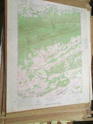 Beavertown PA Snyder Co USGS Topographical Geological Survey Quadrangle Old Map