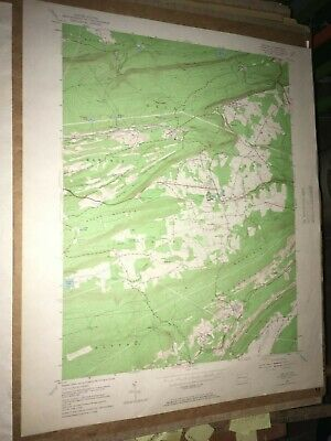 Delano Pa. Schuylkill County USGS Topographical Geological Survey Quadrangle Map