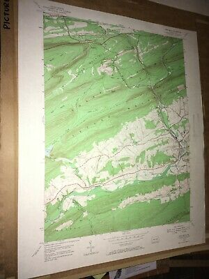 Pine Grove PA Schuylkill USGS Topographical Geological Quadrangle Topo Map