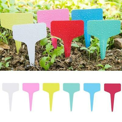 Stickers 2x Garden Herb Markers Metal Stakes With Sticky Labels For Gardening Plot//Greenhouse//Allotment