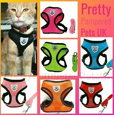 Cat Harness and Lead Starter Set Small Cats or Puppy Dog Kitten Chihuahua UK