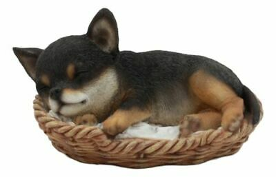 "Ebros Chihuahua Dog Sleeping in Wicker Basket Statue 6.5"" Long Figurine"