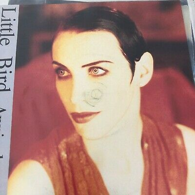 Annie Lennox: Little Bird - Huge vinyl 45 sale - All M/NM