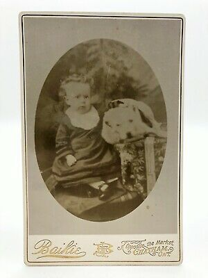 Beautiful Child Boy With Pet Dog Cabinet Card Antique Photograph Chatham Ontario