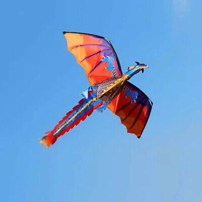 3D Dragon Kite Kid Toy Fun Flying Activity Game Child Gift 328ft Line with Tail