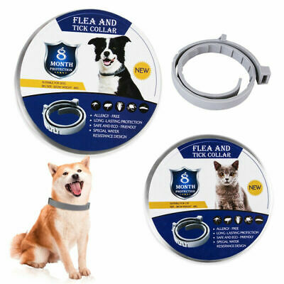 Anti Flea&Tick Neck Collar Strap For Dog Cat Pet 8 Months Protection Adjustable