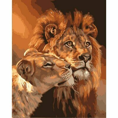 Lion Painting By Numbers Kit Includes Paints / Brush / Board