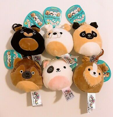 """Set of 6 Kellytoy Squishmallows 2020 Dog A Collection 3.5"""" Mini Clip Plush Doll"""