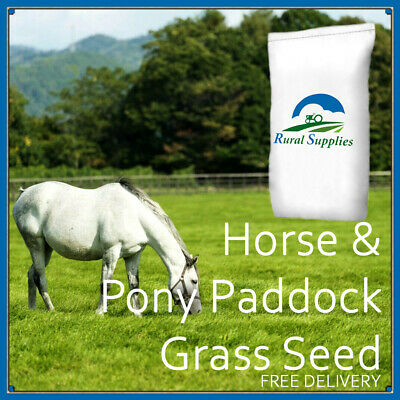 Horse and Pony Paddock Grass Seed Donkey Patch Repair 1 ACRE and 1/2 ACRE