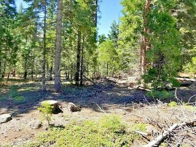 California Pines CA PINES Vacant .922 acre lot warranty deed POWER