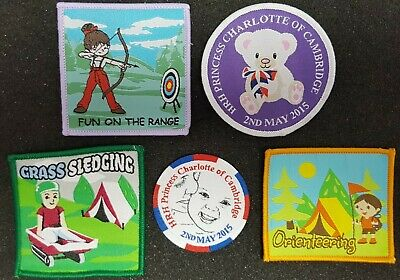1 Grass sledging guide scout sport blanket badge patch patches badges boy girl
