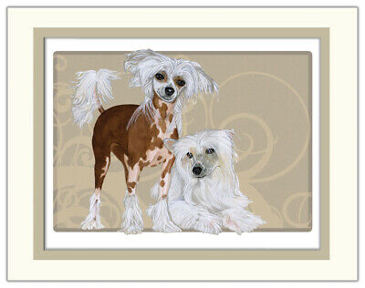 Chinese Crested Limited Edition Matted Print