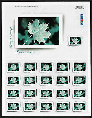2004 PICTURE POSTAGE - Canada 2064 pane diecut 2063i 2064i + combo FDC CV $60