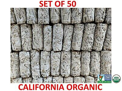 White Sage Cali Smudge Stick SET OF 50 Certified Organic Made in USA