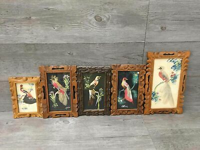 Lot of 5 Framed Matted Mexican Feathercraft Art