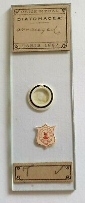 """Very Fine Antique Microscope Slide """"Diatomace Arranged"""" By A.c.cole"""