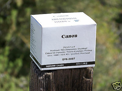 New Genuine Canon QY6-0087-000 printhead for Maxify IB4020 MB2020 MB2320 MB5020