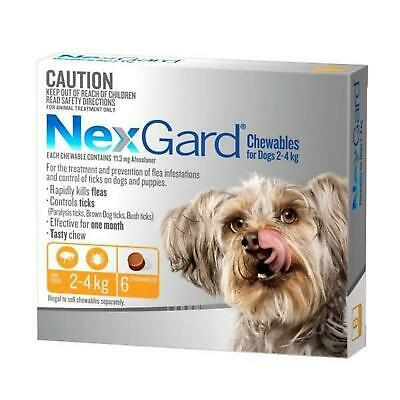 Nexgard 6 for All Size Dogs 6-Pack - Orange Blue Green Red - Nexguard Original