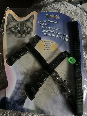 cat harness and lead vest