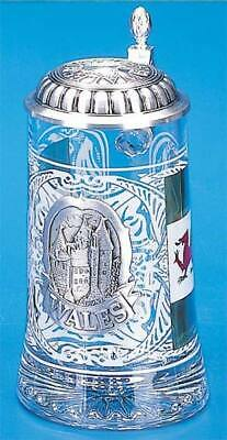 Wales Glass Beer Stein