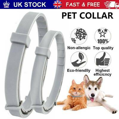 Adjustable Pet Anti Flea&Tick Neck Collar Strap for Dog Cat 8 Months Protection