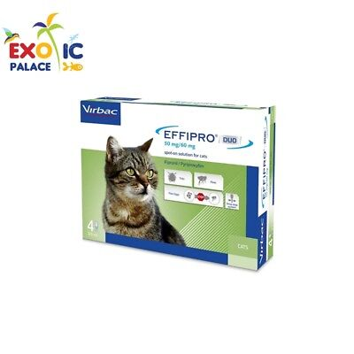 Effipro Duo 4 Pipettes Pour Chats Antiparasitaire Fipronil Spot-On Puces Tiques