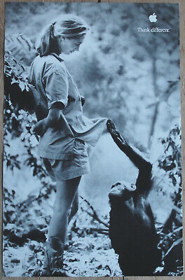 Original Jane Goodall Think Different Apple Educational Series Poster AWESOME!