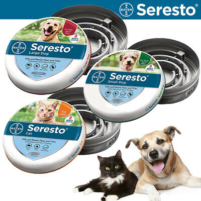 Bayer Seresto Flea & Tick Collar for Large Dog/Small Dog/Cat, 8 Month Protection