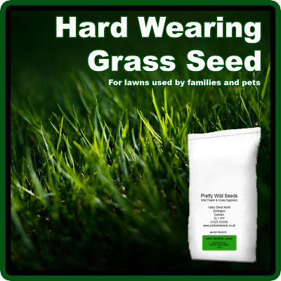 2kg GRASS SEED PRO HARD WEARING BACK LAWN GARDEN PLAY AREAS CHILDREN DOGS 2 Kg