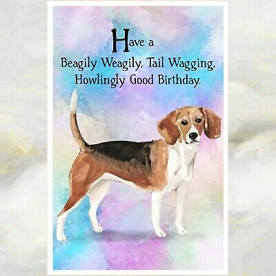 Single Large Luxury Beagle Birthday Card Dog RR