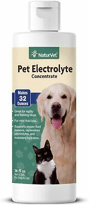 NaturVet – Pet Electrolyte Concentrate for Dogs & Cats – Plus Breath Aid – 16 oz